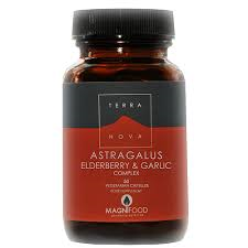 herbs elderberry and astragalus