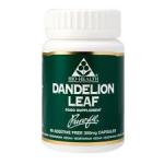 bio h dandelion leaf